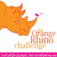 Mi rinoceronte naranja
